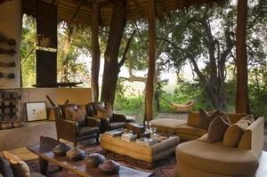 sandibe safari lodge safari
