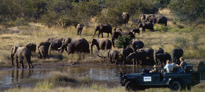 On Safari in Style | Luxury African Safari Vacations | Classic Africa - Best Luxury African Safaris